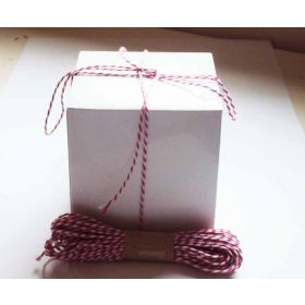 JEMPAK UK Pack of 10 white high Gloss Gift/favour boxes with hinged lid (10cm x 10cm x 10cm) with 10M Baker's twine -HOT PINK