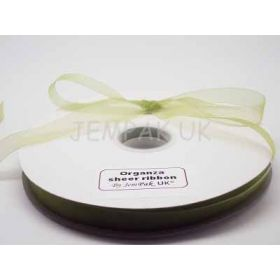 5M x 10mm Organza sheer ribbon - Apple green