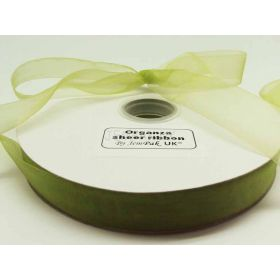5M x 25mm Sheer ribbon - Apple green