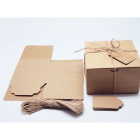 Pack of 10 BROWN KRAFT Gift/favour boxes with hinged lid (13cm x 13cm x 8cm). Jute String & kraft tags included.