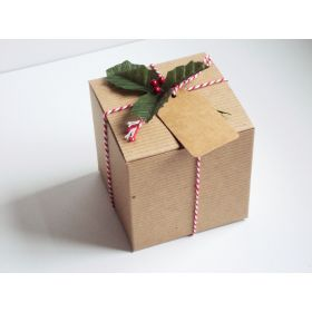 Pack of 10 BROWN KRAFT Gift/favour boxes with hinged lid (10cm x 10cm x 10cm) with Red bakers twine, gift tags & artificial holly leaves with berries.