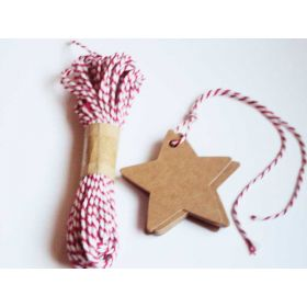 JEMPAK UK Pack of 20 blank Star shape Kraft gift tags with 10M Red Baker's Twine