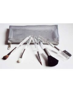5 piece travel size make up brush set in a silver pouch