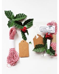 JEMPAK UK® Pack of 10 brown kraft gift tags with artificial Holly leaves, berries & 5M red bakers twine