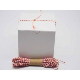 JEMPAK UK Pack of 10 white high Gloss Gift/favour boxes with hinged lid (10cm x 10cm x 10cm) with 10M Baker's twine -ORANGE