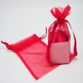 "Pack of 10 Red organza bags with satin drawstring cord (4"" x 6"")"