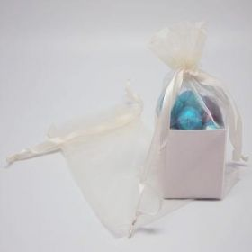 "Pack of 10 Ivory organza bags with satin drawstring cord (4"" x 6"")"