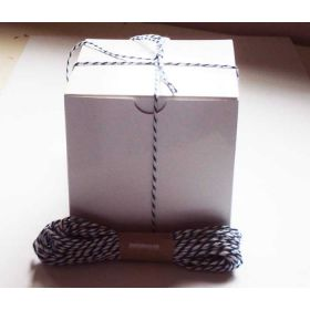 JEMPAK UK Pack of 10 white high Gloss Gift/favour boxes with hinged lid (10cm x 10cm x 10cm) with 10M Baker's twine -BLUEBERRY