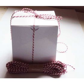 JEMPAK UK Pack of 10 white high Gloss Gift/favour boxes with hinged lid (10cm x 10cm x 10cm) with 10M Baker's twine -RED