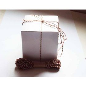 JEMPAK UK Pack of 10 white high Gloss Gift/favour boxes with hinged lid (10cm x 10cm x 10cm) with 10M Baker's twine -XMAS COLOUR