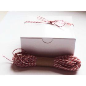 JEMPAK UK Pack of 10 white high Gloss Gift/favour boxes with hinged lid (10cm x 10cm x 5cm) with 10M Baker's twine -ORANGE