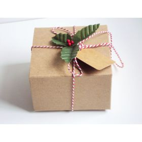 Pack of 10 BROWN KRAFT Gift/favour boxes with hinged lid (10cm x 10cm x 5cm) with Red bakers twine, gift tags & artificial holly leaves with berries.